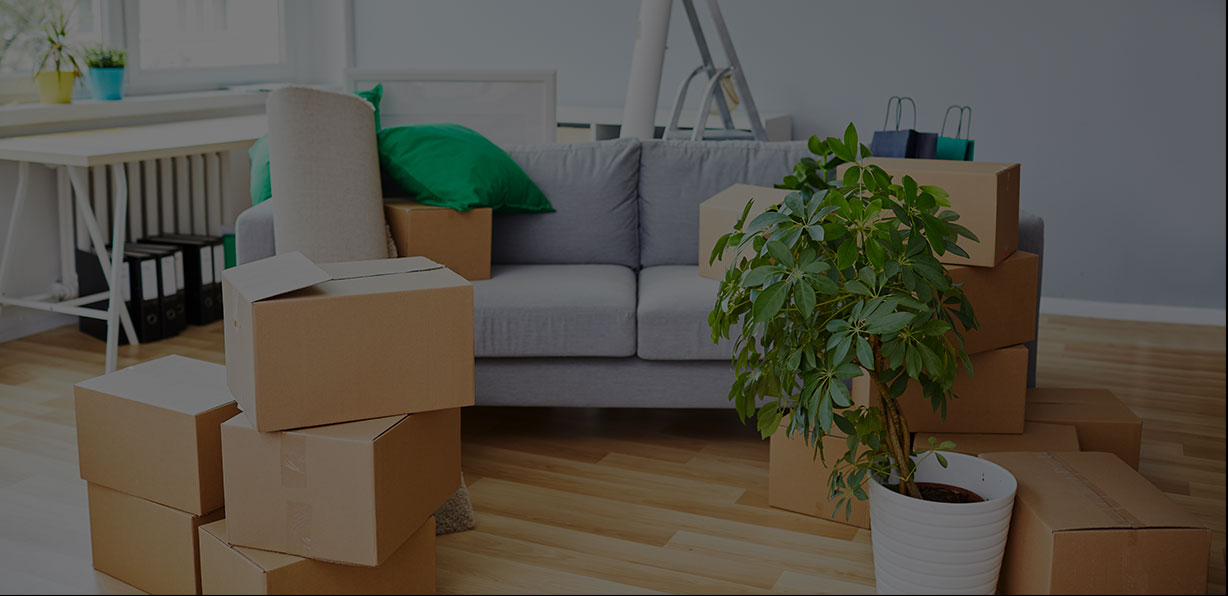 residential moving services in uae
